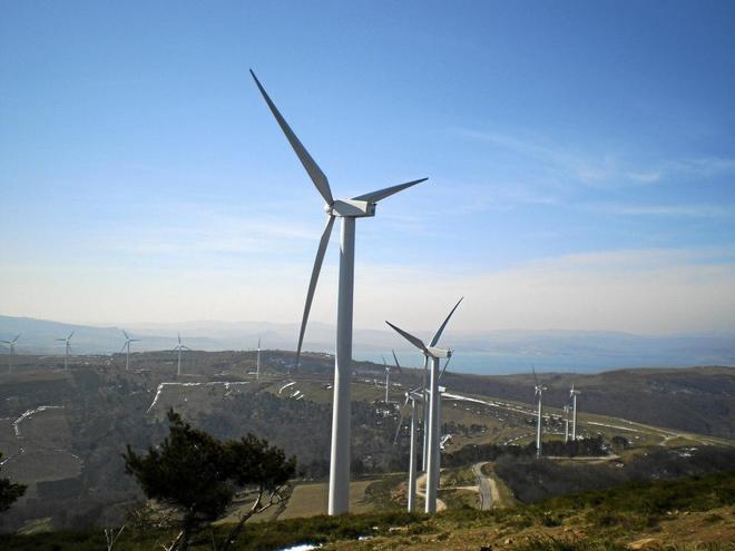 Forestalia, Gas Natural y Endesa arrasan en la subasta de energías renovables