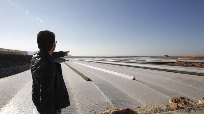Los invernaderos, la mayor 'central eléctrica' de España