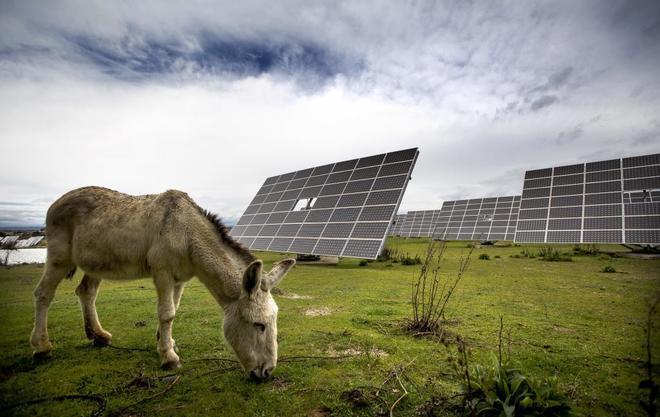 12 funcionarios defienden a España en los 28 pleitos internacionales por el recorte a las renovables